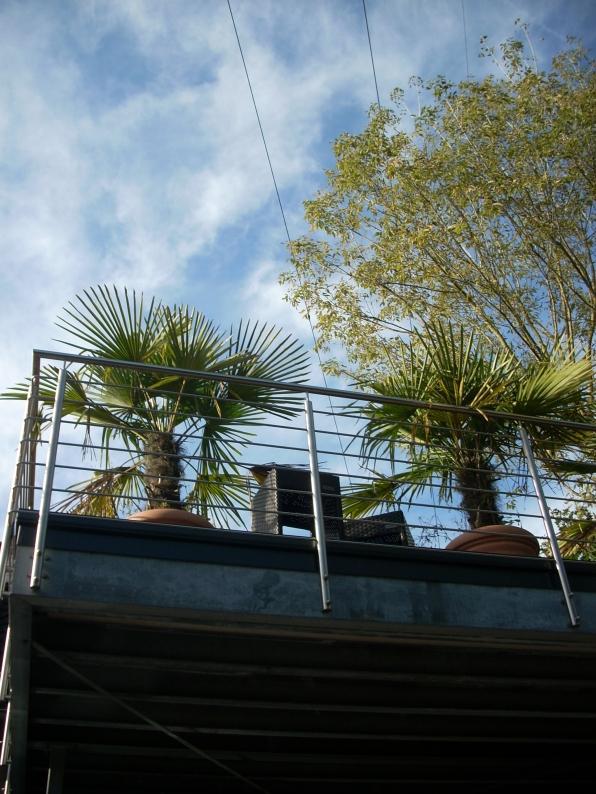 Palmen für den 30.09.