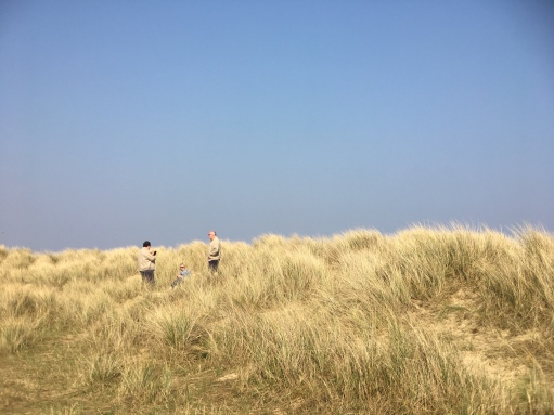 group in the dunes